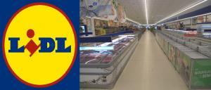 Commerce Lille Roubaix : inauguration du nouveau magasin Lidl