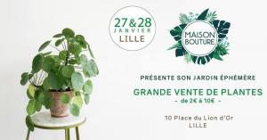 Commerce Lille : Maison Bouture investit le Vieux Lille pour sa grande vente de plantes