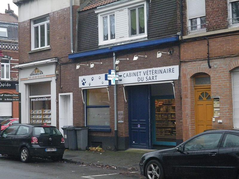 Bureaux location quartier sart babylone lille villeneuve for Piscine babylone villeneuve d ascq