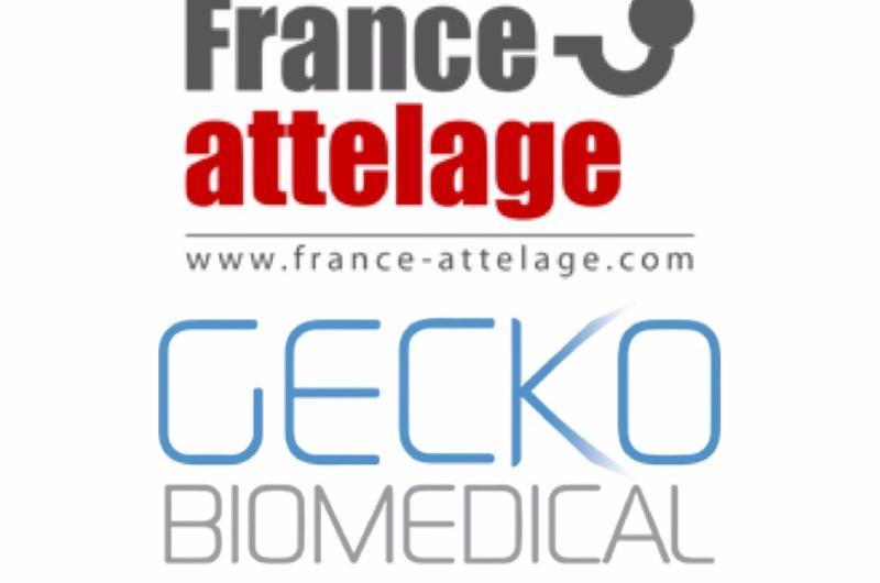 Entrepôt Lille : France Attelage et Gecko Biomedical s'installent à Roncq