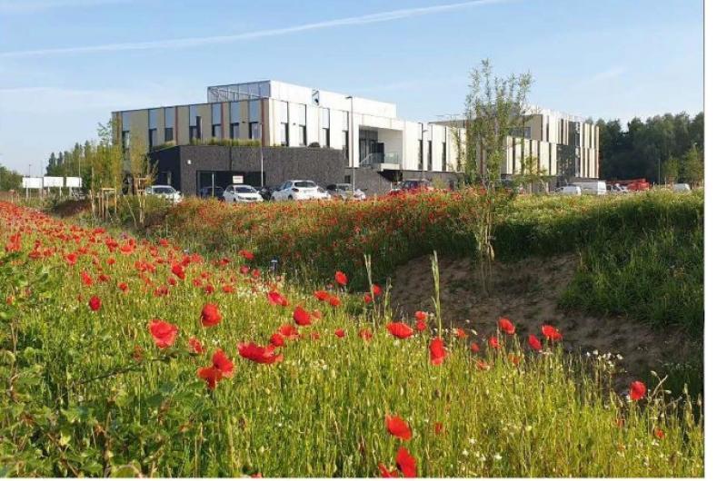 Location bureaux Lille (Englos)